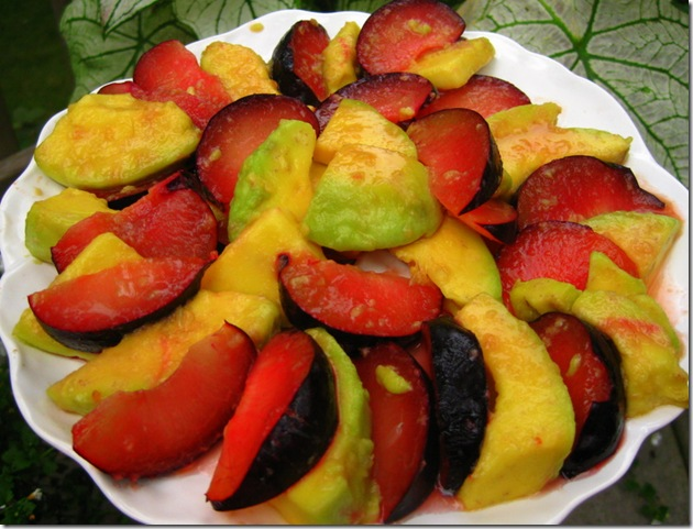 Avocado-Plum Salad For Ferragosto