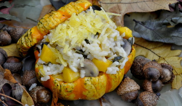 Stuffed Squash And Pumpkin
