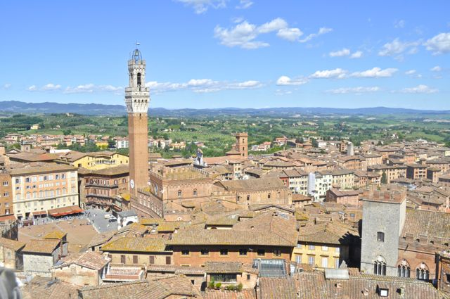Siena Campo And Landscape