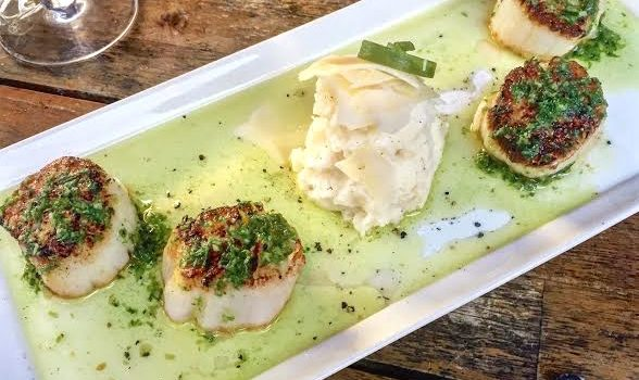 N7's Seared Scallops With Chive Oil